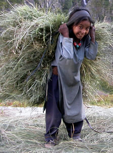 girl_carrying_grass